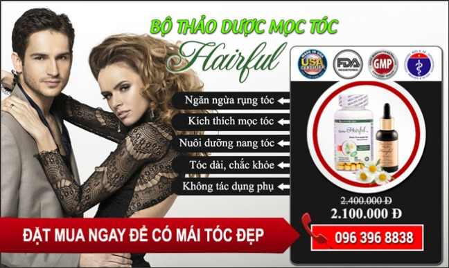 banner-moc-toc-hairful-3